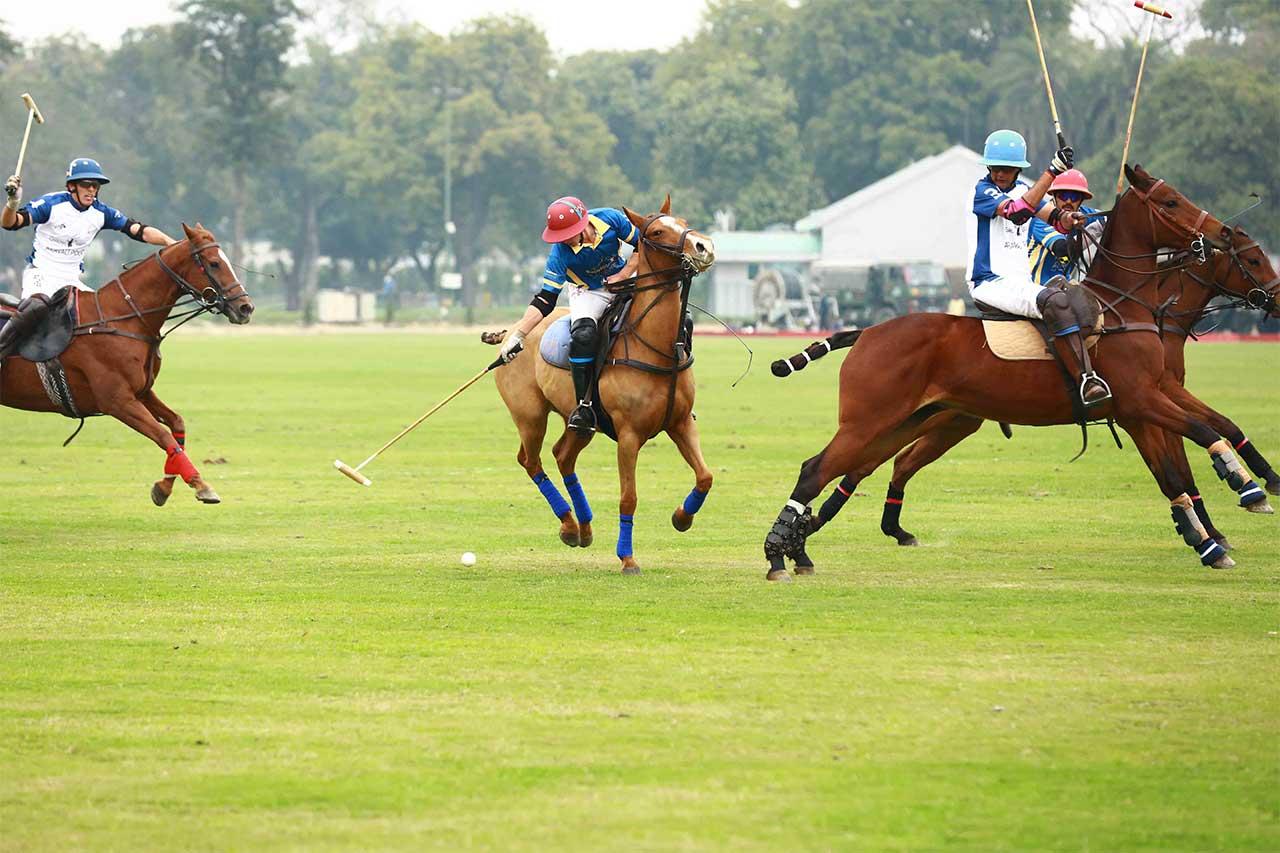 Cavalary Gold Cup (Delhi)